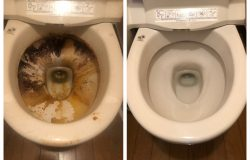 東村山市 在宅 ハウスクリーニング トイレクリーニング